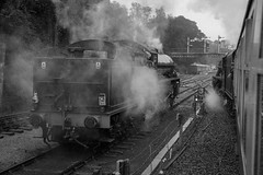 9Y0A5993-2 (kevaruka) Tags: uk greatbritain england bw rain clouds canon blackwhite flickr rainyday cloudy unitedkingdom yorkshire overcast historic retro 5d locomotive frontpage britishrail steamengine steamtrain 24105 cloudyday northyorkshiremoorsrailway filmlook preservedrailway canon24105l canon5dmk3 5dmk3 5d3 5diii canoneos5dmk3 august2014