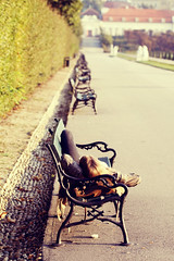 Jetlag (CoolMcFlash) Tags: vienna wien road street summer woman canon garden bench relax person photography eos austria sterreich focus warm alone fotografie dof sommer linie row retro line depthoffield mde tired repetition belvedere frau lying tamron 90mm garten jetlag weg schrfentiefe fokus softtones liegen sitzbank ausruhen reihe alleine tiefenschrfe flickrfriday strase rasten 60d schrfeverlauf hintereinander f004