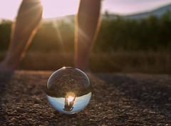GlassSunset (tom.christen) Tags: sun nature glass schweiz switzerland suisse crystal natur sunbeam sonnenstrahlen crystalball glaskugel srasse grenchen sonn throughmycrystalball