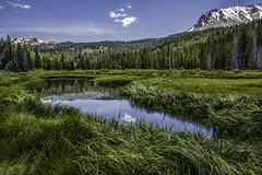 Peace out west... (jaegemt1) Tags: california park summer reflection green nature water grass landscape nikon pines volcanic lassenvolcanicnationalpark nikkor1685 jaegemt1 nikond7100