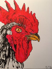 A rooster a day, day 21 (anviss) Tags: illustratie tekening schets sketch rooster haan pentel tombow marker red black