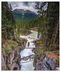 Sunwapta Falls (.Wadders) Tags: sunwapta sunwaptafalls waterfall water alberta canada d600 ngc nikonfxshowcase nikkor1635mmf4 jasper national park jaspernationalpark