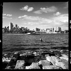 Looking across Sydney Harbour to Blues Point and North Sydney from Barangaroo, 2015. (Albion Harrison-Naish) Tags: sydney barangaroo newsouthwales australia streetphotography sydneystreetphotography albionharrisonnaish iphoneography mobilephotography iphone iphone5s hipstamatic lowylens aodlxfilm unedited straightoutofcamera sooc
