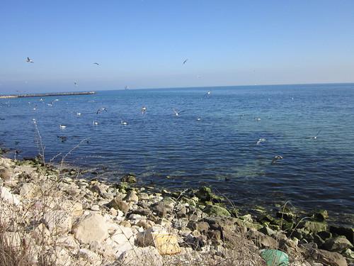 Varna beach