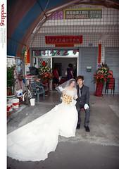 DSC_4267 (Neko11 ()) Tags: wedding portrait  neko                                                neko11