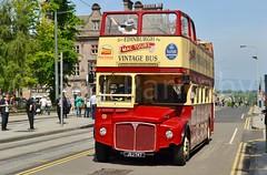 DSC_0202 (Ray Parnaby Bus Stop Photos) Tags: lothian lothianbuses edinburghtours mactours edinburghbustours