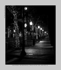 stumbling home (salar hassani) Tags: california street leica trees home night dark 50mm university pavement sony f2 lit avenue palo alto av sum micron stumbling a7r paloalro wavily