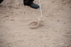 Out Of The Bunker (Ashey1209) Tags: sport golf sand open competition bunker golfing hoylake theopen royalliverpool