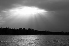 Dechsendorfer Weiher (my14all) Tags: lake landscape see blackwhite sonne erlangen schwarzweis dechsendorf wolkenlandschaft