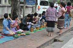 The faithful line up, awaiting the arrival of the monks (oldandsolo) Tags: southeastasia earlymorning buddhism tourists lp laos luangprabang buddhistmonk laopdr makingmerit unescoworldheritagecity buddhistreligion takbat buddhistfaith morningalmsgivingritualluangprabang morningalmsgivinginluangprabang