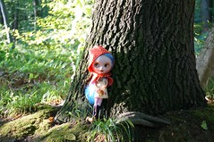 Blythe a Day 22 July 2014 - Little Red Riding Hood