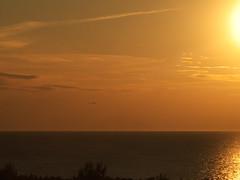birds on a sky (Darek Drapala) Tags: light sunset sea sky sun seascape bird birds yellow landscape lumix poland polska baltic panasonic g2 seashore skyskape panasonicg2