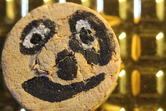 small faces (Etching Stone) Tags: motion nature stone closeup children flow gold kid education child power emotion wine time cork portait dream rocker primate  rockinghorse omen varnish    smallfaces suppersready pulsating