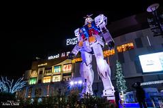 DSC08879 (arieschou) Tags: japan night tokyo   odaiba    nex6