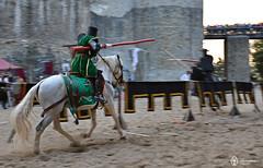 16 August 2014 » Festivalul de Artă Medievală Ștefan cel Mare
