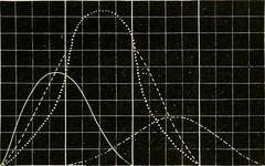 Anglų lietuvių žodynas. Žodis grid excitation reiškia tinklelio sužadinimas lietuviškai.