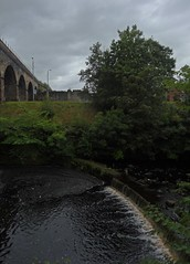Killie Weir (Bricheno) Tags: bridge river scotland railway escocia kilmarnock szkocja weir schottland ayrshire scozia cosse  esccia   kilmarnockwater bricheno scoia