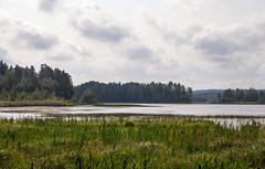 Lake Kuokkajärvi