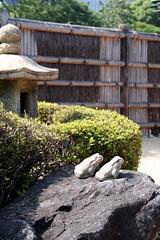 Tokyo - Hamarikyu Teien (*maya*) Tags: park parco rock japan garden lago tokyo pond skyscrapers frog zen lantern rana roccia acqua giappone lanterna zengarden giardino shiodome laghetto giardinozen stagno grattacieli hamarikyuonshiteien hamariky hamarikygardens hamarikyteien