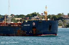 Boating Traffic on the Great Lakes: (realfastfotography) Tags: lake canada lines port iron traffic michigan great central lakes coal steamship ore huron csl freighters sarina algoma interlakes downbound upbound