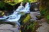Alsea Falls 2_163 (martinjones1946) Tags: oregon rural landscape waterfall alseafalls alseariver bentoncounty platinumheartaward nikond5000