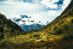Ultra Trail du Mont Blanc (Federico Ravassard) Tags: face canon north trail chamonix mont blanc federico utmb 6d ravassard