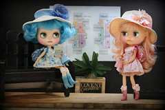 Blythe A Day ~ September 2014 ~ Day 20:  QUEST
