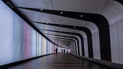 London   |   Light Tunnel (JB_1984) Tags: tunnel tunnelvision pedestriansubway subway station tube underground londonunderground kingscrossstation stpancrasinternational kingscrossstpancras hdr highdynamicrange londonboroughofcamden london england uk unitedkingdom kingscross nikon d7100 nikond7100