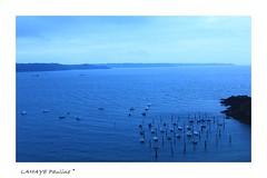 Gwin Zegal au petit matin (paliena33) Tags: blue sea mer france port fishing bretagne bleu fishingboats matin aurore pche ctesdarmor bteaux gwinzegal