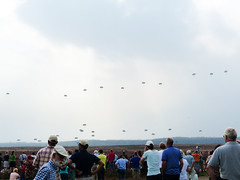 Para's landing on the drop zone at the Ginkelse Heide #Margetgarden2014 #Airborne_2014