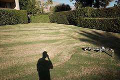 R0010967 (Patrick Dunaway) Tags: street trip wedding palmsprings