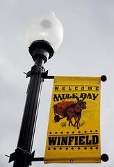 09-27-2014 Mule Day in Winfield