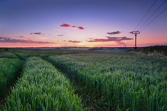 At the end of the day     *Explore* (sarah_presh) Tags: sunset england colour field clouds corn cornfield lincolnshire tranquil nikon1685mm nikond7100
