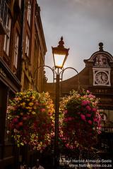 Lamppost In Windsor, England
