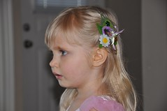 Crazy fairy hair-clips craft ;)