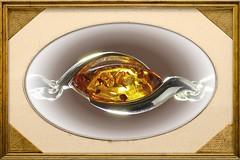 Amber Life (MedievalRocker) Tags: eresting macro