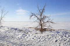 Frozen Lake Erie (jtrainphoto) Tags: mentorohio winter lakeerie snow mentor ohio unitedstates us