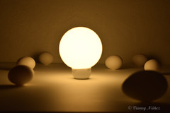 luz (Vianey Núñez) Tags: méxico prácticas fotográficas retrato producción huevos instalación cdmx museo nikon 1855mm luz