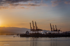 Sunrise over Vancouver port cranes (Phil Marion (177 million views - THANKS)) Tags: travel philmarion philippemarion explore phil marion canon5diii 5d3 canon toronto canada candid architecture street portrait landscape wildlife nature bird urban flowers macro insect longexposure ontario skyline cityscape home sky water outside beach dog old young indoors sunrise sunset dusk fun shadows hdr snow art model feet night shutter incredible focus happy notsony notnikon