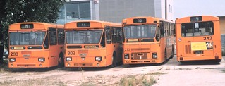 302 Acap Padova buses summer 2001 including preserved Fiat 470 302