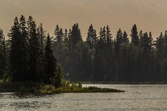 Haze (murph le) Tags: trees sky lake water birds forest island fire nationalpark haze smoke ripples elk astotin