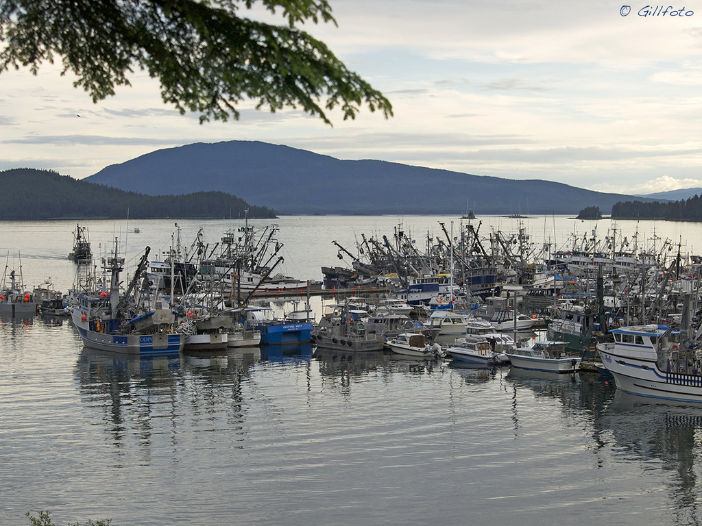 The world 39 s best photos of alaska and seiner flickr hive for Juneau alaska fishing