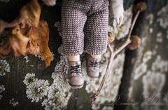 Romantic Wonders 79 (romantic wonders) Tags: flowers boy art girl doll mini romantic accessories laces wonders