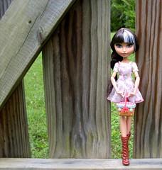 Picnicking is a habit (Stella Nere) Tags: fairytale high doll dolls fairy littleredridinghood hood after ever tale mattel cerise eah everafterhigh cerisehood