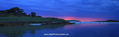 Pan Blue and Pink Sainya (June Grnseth EFIAP PPSA) Tags: ocean pink blue trees beach reflections midnight lofoten bestphotolofoten sainya