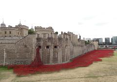 Tower of London - WWI poppies (AnthonyR2010) Tags: london ceramic artist wwi poppy poppies cummins toweroflondon paulcummins