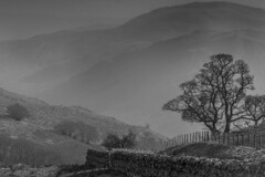 These mist coloured mountains..... (MacBeales) Tags: uk england blackandwhite white mist lake black mountains tree canon eos 350d district pass cumbria ullswater