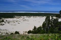 USA - Oregon - Oregon Dunes NRA (Jim Strachan) Tags: