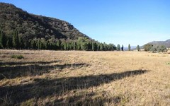 Lot 187 Worondi Creek Road, Gungal NSW