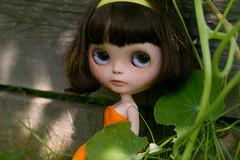 Angus (chaoskatenkosmos) Tags: travelling doll angus wsb blythe custom